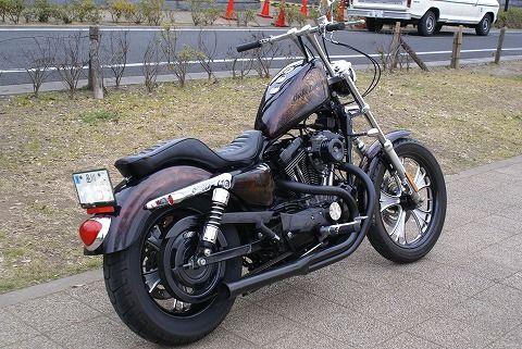 s-DSC08367 blog.jpg