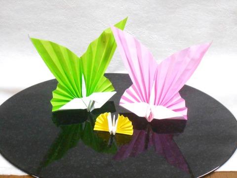 カラー祝鶴