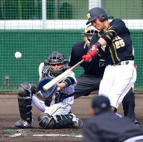 【徹底討論】阪神の江越大賀(25)ってもう終わってしまった選手なん?