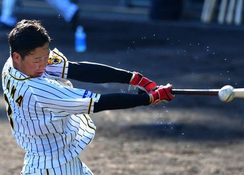 大山悠輔(14本)がチーム内本塁打王という事実
