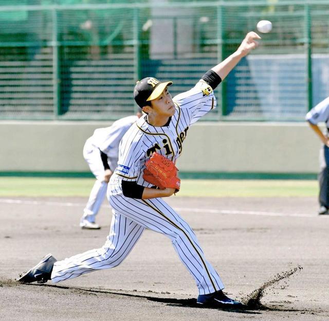 阪神三年目の呂彦青とかいう謎選手