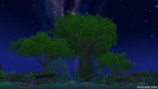 世界樹の頂