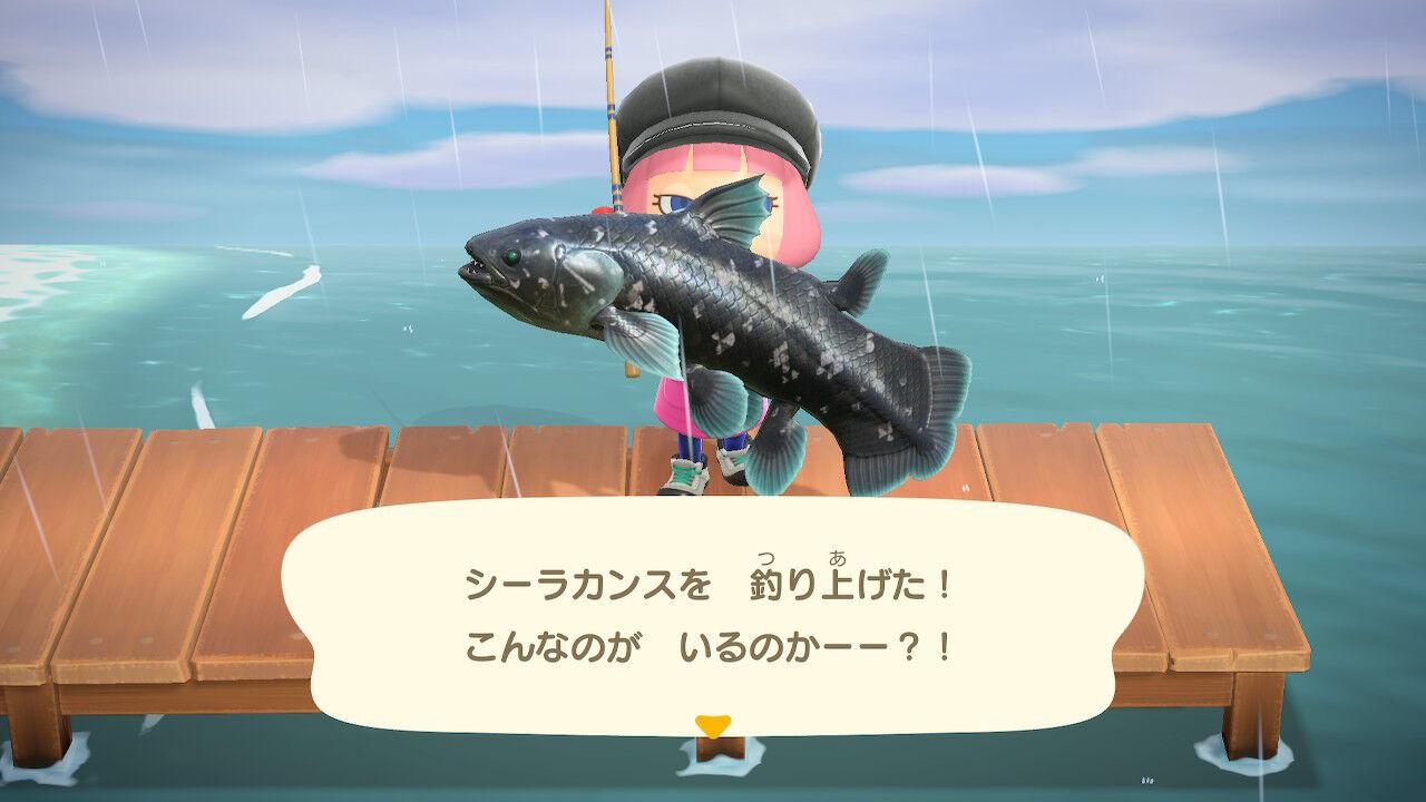 森 釣り 方 シーラカンス あつ
