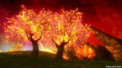 赤熱の荒野