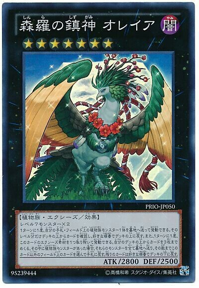 card100016173_1