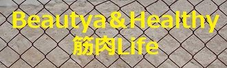 wire-mesh-fence-1799123_640