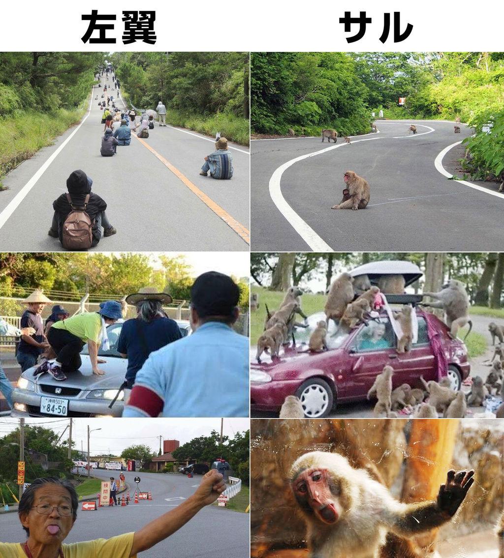 【沖縄】辺野古反対派に押し倒され、防衛省職員が大けが 搬送 被害届提出 嘉手納署が傷害事件で捜査 YouTube動画>8本 ->画像>31枚