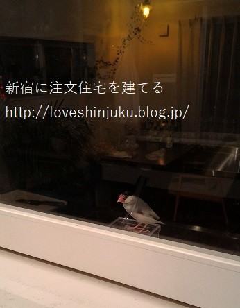 P_20161214_182251