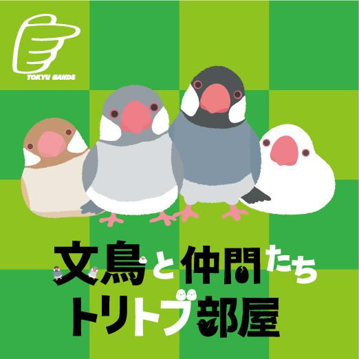 文鳥_ロゴ-thumb-522x522-138094
