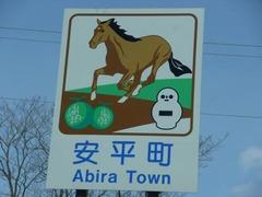 abira100211