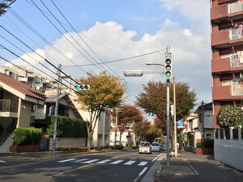 Good season for running and fall colours in Fukuoka
