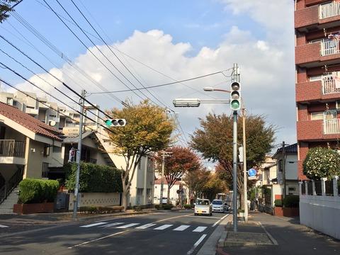 Good season for running and fall colours in Fukuoka
