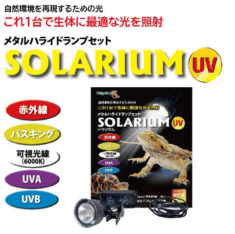 solarium1