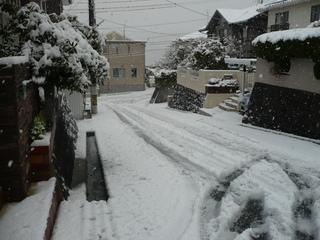 家の前の雪1