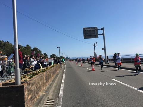龍馬マラソン風景