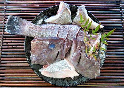 マハタ鍋 (1)