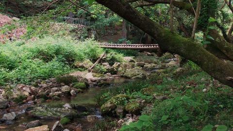 渋川トンボ公園