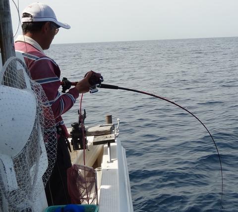 高知 沖釣り
