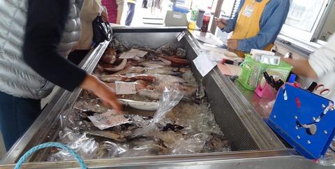 天然色市場鮮魚