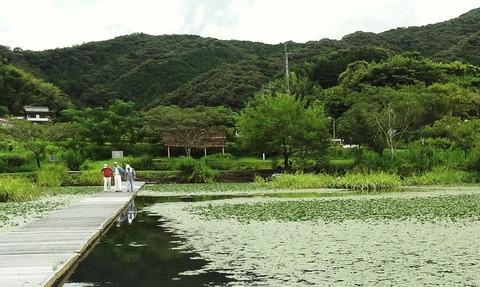 日高村 調整池