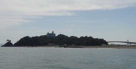 沖から見る桂浜