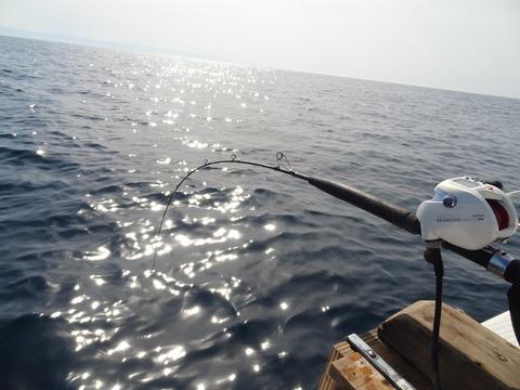 高知沖釣り