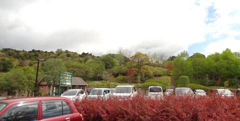 北川村モネの庭 (2)