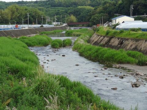 赤野川 (2)