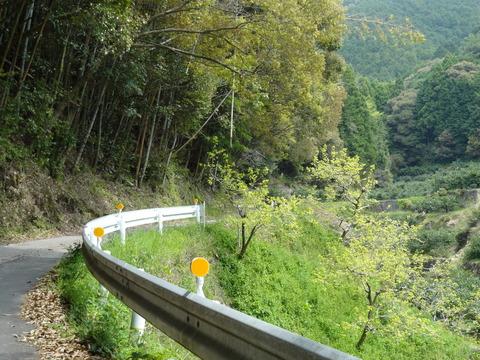 高知県道30号