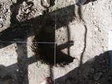 基礎を埋める穴を掘りました。