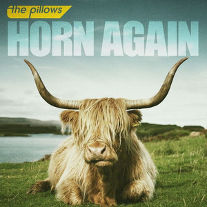 The_Pillows_Horn_Again_2011