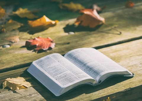 bible-1868070_960_720