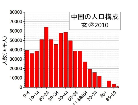中国の人口構成(女)