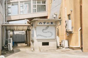tokunoshima0I9A3948_TP_V4