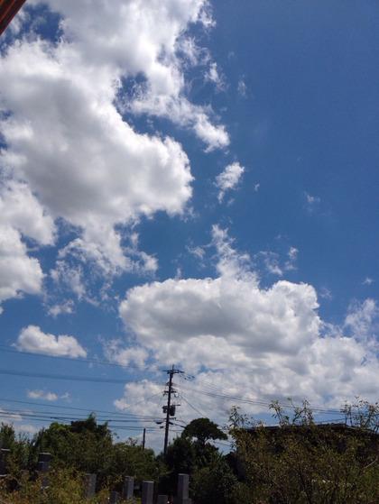 2012-08-05 12:39:16 写真1