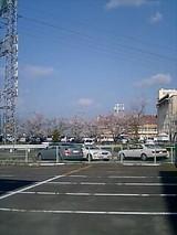 990064c1.jpg