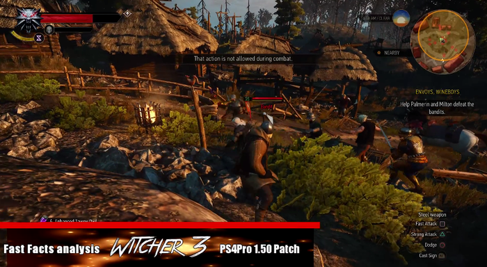 The Witcher 3-