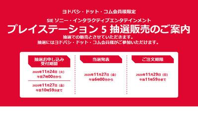 ヨドバシ・ドット・コム 人気商品抽選_ヨドバシ.com - 201124-212809