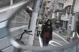 Tsubaki_11_50_0315a