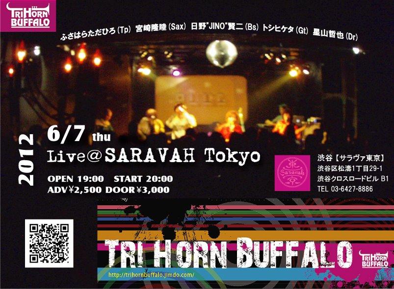 TRI-HORN-BUFFALO20120607
