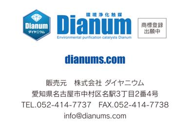 ダイヤニウム11