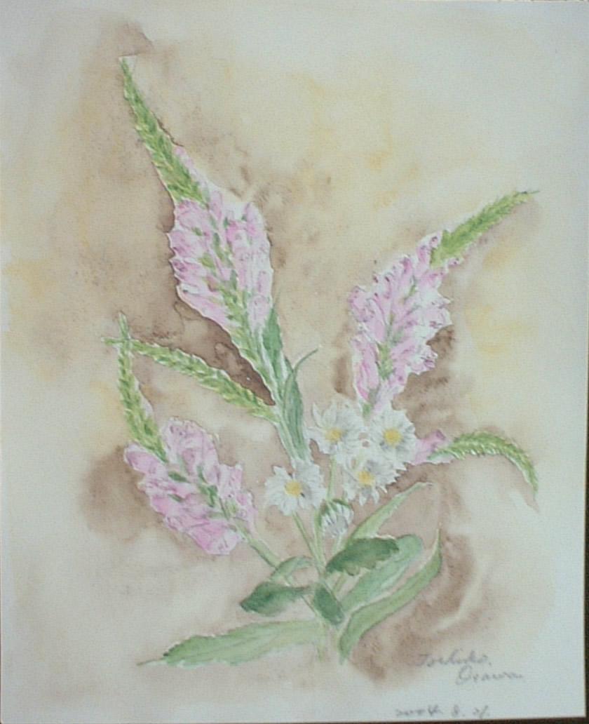 虎の尾とアスター 〔August 21, 2004〕 これも、前に描いたお花・ブバリアのように、