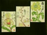 菜の花・梅・パフィオペディルム