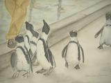 ペンギンさんのお散歩 [January 24, 2012 ]