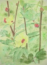 木立葵が咲きました! 〔September 20, 2009〕