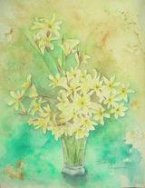 庭の花 〔April 25, 2009〕