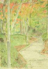 有馬・瑞宝寺公園の紅葉 〔November 20, 2005〕