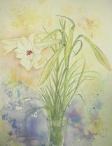野生のユリの花 [August 15, 2010]