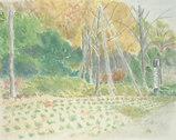 尼崎市都市緑化植物園 〔November 18, 2002〕
