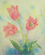 tulip^^ 〔Feburuary 17, 2009〕